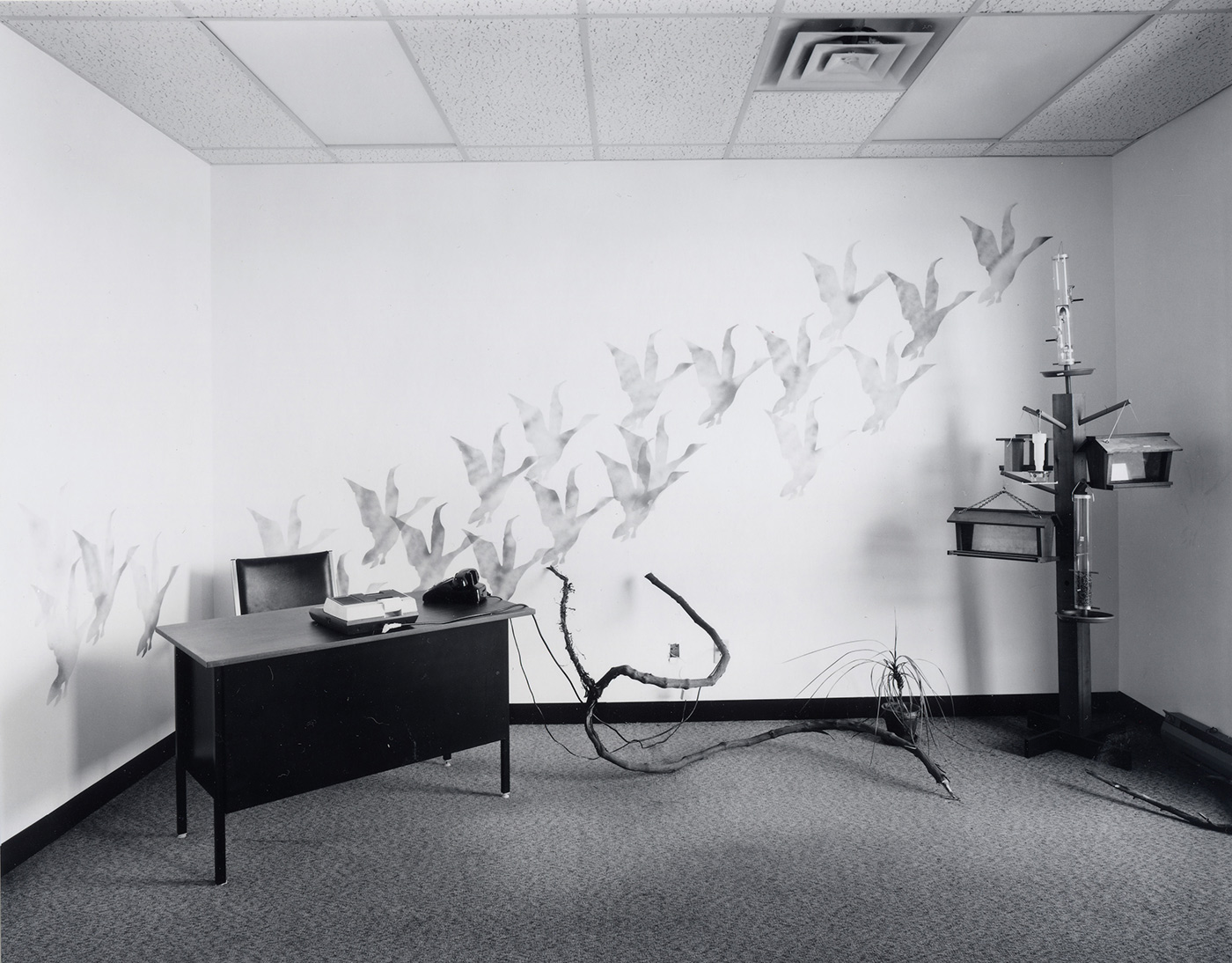 Lynne Cohen / Estate  - Office and showroom, 1996